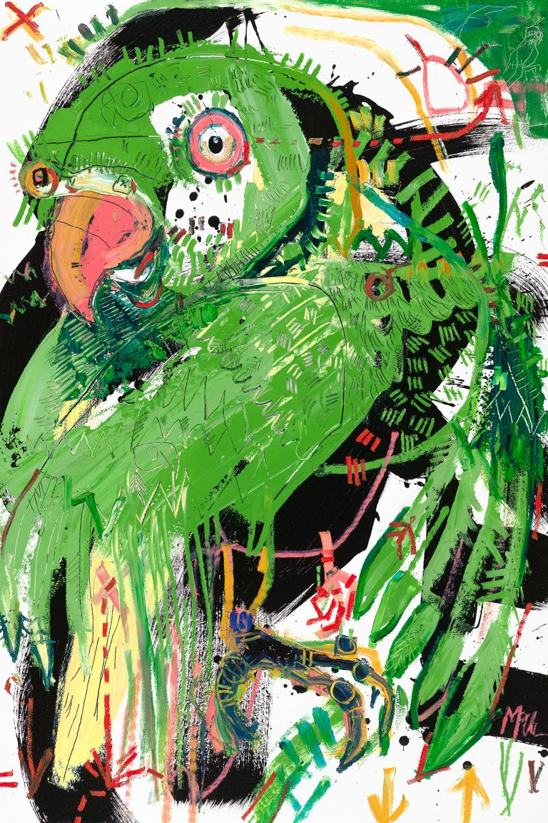 Ringneck Parakeet McClendon Fine Art Modern Fine Art Asheville Painting